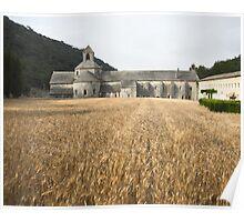 Wheat field, l'Abbaye de Senanque, Provence Poster