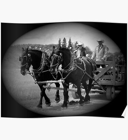 The Black Team II, The Bar U Ranch Poster