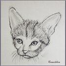 Meow by Bumchkin