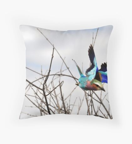 Lilac Breasted Roller - Zimbabwe Throw Pillow