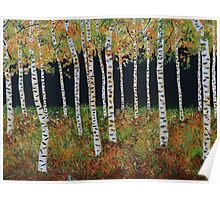 Ready for Change Colorado Aspen Tree Painting Poster