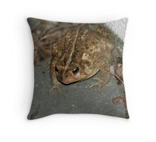 I'm sneaking in anyway!  3 of 4 Throw Pillow
