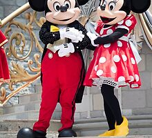 Mickey and Minnie in Magic Kingdom by ralovins