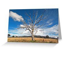 One Tree - Mudgee/Ilford Sydney Australia Greeting Card
