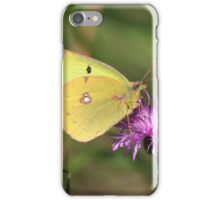 Beautiful Clouded Yellow Butterfly iPhone Case/Skin