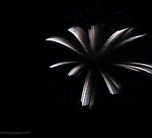 Fireworks 8 by Barberelli