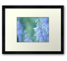 Thinking of you... Framed Print