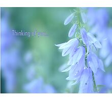 Thinking of you... Photographic Print
