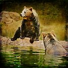 ...and Grizzley Bears..Oh My! by Laura Palazzolo
