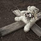 Teddy Bear on Cross #2 by farmboy