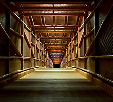 Vibrant Pathway Into Darkness by Craig Durkee
