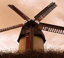 Stone-ground Wind Mill by Ferdinand Lucino