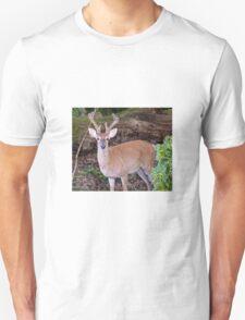 WHITE TALE IN VELVET Unisex T-Shirt