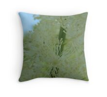 Bottle Brush White Flower Throw Pillow