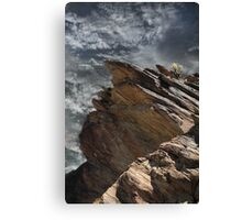 Lonely at the Top Canvas Print