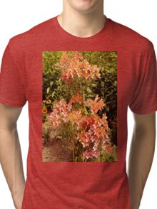 Burning Bush Tri-blend T-Shirt