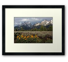 Grand Teton & Mule's Ears Framed Print