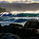 waubs bay. bicheno, tasmania by tim buckley | bodhiimages