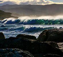 waubs bay. bicheno, tasmania by tim buckley | bodhiimages