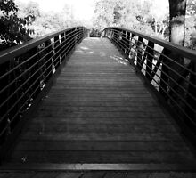 A Bridge To Where You Want To Go by Braden Bygrave