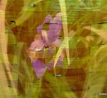 An Iris Picnic by Debbie Robbins