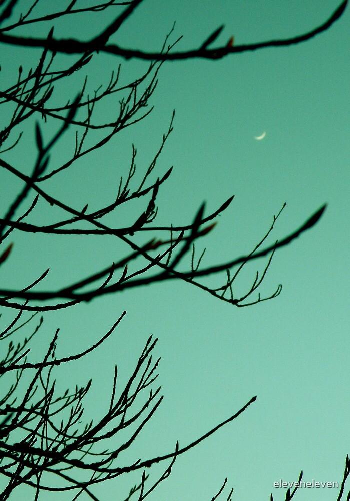 Wee Moon by eleveneleven