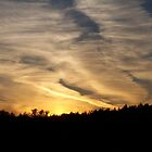 Wispy Clouds glowing with Sunset Colours  by lvitup
