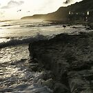 Crystal Cove Sunset by Rhonda Strickland