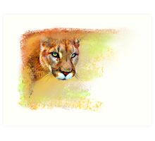 Mountain Lion Oil Pastel Art Print