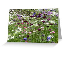 The Cornflower Mead Greeting Card