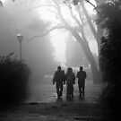 foggy walk by Dinni H