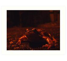frog at large Art Print
