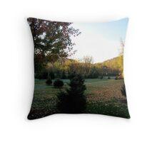 Autumnal morning Throw Pillow