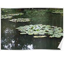 Giverny Waterlilies Poster