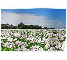 Opium......... Poster