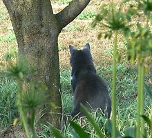 Minnie Mouser on guard duty by TraceyHarland