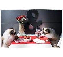Lulu & Finn Caturday Poker Poster