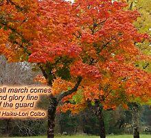 Autumn Haiku by Rainydayphotos