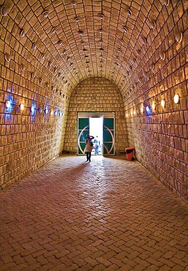 Entrance to Ali-Sadr Cave - Iran by Bryan Freeman
