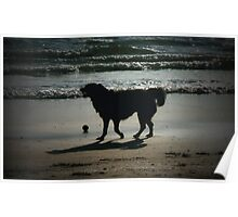 One More Game of Fetch Before the Sun Goes Down Poster