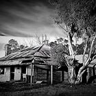 Abandoned Gem by Margaret Metcalfe