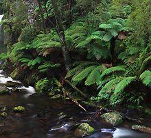 Hopetoun Falls by Andrew McNeil