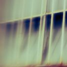 Window Bars by Angie Muccillo