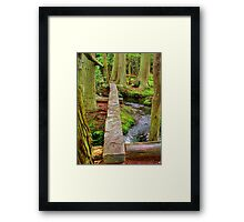 Over the Brook  the Red Cedar trail     Framed Print