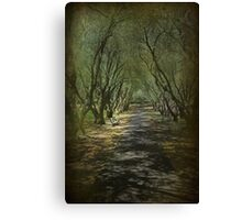 Site of Many Musings Canvas Print