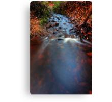 """Erosion"" Canvas Print"
