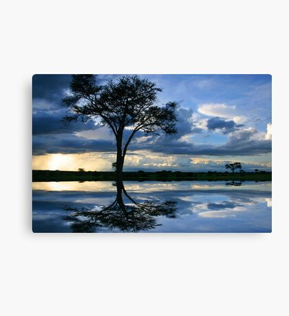 Reflections of Africa Canvas Print