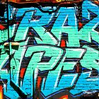 Graffiti Craze 1 by Ash Walani