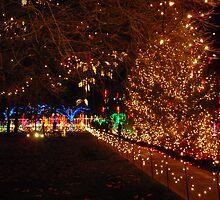Christmas Lights by Leyla Hur