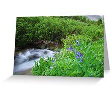 Sneffels Creek Greeting Card